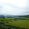 茶臼山4本