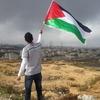 アラブの春の結末 - 中東に民主主義は育たないのか