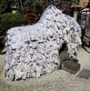 【京都】【御朱印】『安井金比羅宮』に行ってきました。  京都観光  京都旅行 国内旅行 御朱印集め