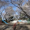 多摩川桜百景 -44. 西河原公園-