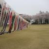 壬生町壬生総合公園20180402