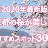 【2020年最新版】京都の桜が美しい大人気スポットおすすめ30選