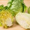 春キャベツが美味しい季節:「巻きが柔らかく,弾力があるもの」を選ぶのが良いとのことです. 結球メカニズムはおおよそ解明されているようで,キーとなるのは「オーキシン」とよばれる植物成長ホルモン. キャベツは,ケールやブロッコリー,カリフラワーなどと同じ種 Brassica oleracea . 芽キャベツは脇芽が結球したもの.