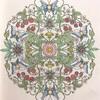 木苺と時計草の塗り絵【マンダラコロリアージュ】背景はコピーで試し塗り