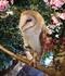 オリオンの広島旅|★おすすめ観光・グルメスポット★ 3日目(ふくろう編②)