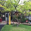 大阪の山の中、温室が会場の株主総会に参加してみました【ユニバーサル園芸社】