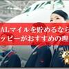 【特典航空券への近道】JALマイルを貯めるなら脅威の方法「交換率82%」のモッピーがおすすめな理由