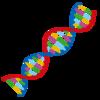 DNAのクセを知った生き方をする。