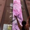 【女一人旅】東京あちこち・渋沢栄一を訪ねて(東京都北区を歩こう)飛鳥山公園②大河ドラマ館