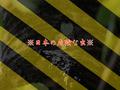【日本】アウトドア中は要注意!人間に害を及ぼすヤベー虫まとめ