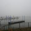 浜ちゃん日記    濃靄に包まれた浜名湖