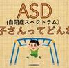 ASD(自閉症スペクトラム)の子の特性を理解し支援に繋げよう