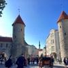 【タリンの街歩き】中世の景色を残す旧市街の見どころを回ってきた