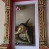 40番 珍しい左手枕の寝釈迦仏に会いに行くお寺
