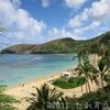 ハワイ旅行㉒ ハナウマ湾でシュノーケリング レンタカーで行けば快適だった