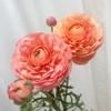 お花のある生活☻