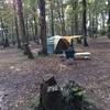 【キャンプ】ホウリーウッズ久留里キャンプ村に行ってきました。