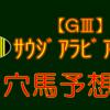 【GⅢ】サウジアラビアRC 結果 回顧