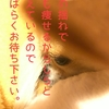 【SIXPAD】【Chihuahua】23分✖︎5セットを耐えるチワワ。