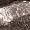 【地震前兆】千葉県富津市海岸に謎の『大きく白い物体』が漂着!7月25日07時14分頃に千葉東方沖を震源とするM5.3の地震が発生!相模湾・東京湾でもクジラの漂着が相次ぐ!2020年巨大地震発生説のある『首都直下地震』・『南海トラフ地震』にも要警戒!