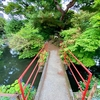 前橋 銭洗弁財天の池(群馬県前橋)