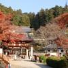 晩秋の京都・奈良 ⑧岡寺