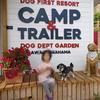 くるま de camp@ dogdept garden camp(1/2)