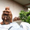 沖縄okinawankoオキナワンコブログ
