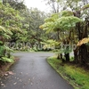 ハワイ島へ行くならボルケーノに宿泊しよう!