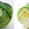 高栄養価野菜七種の混合サラダこれだけ摂れば元気いっぱい!
