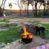 【キャンプ】愉快なキャンプ客たち♪ ~ワーケーション・送別旅行・オーストラリア1周・隔離生活~