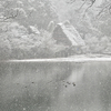 白川郷に行った気分を味わえる岐阜市の松尾池。