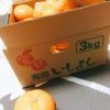 有田みかんを箱で買った。