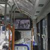 神戸市灘区「桜のトンネル」も満開です。