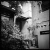 田所美惠子さんの写真展へ