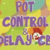 【上級編】ポットコントロールとディレイCB part1