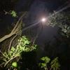 月夜のリベンジエギング!釣り納め??、