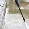 玄関アプローチの洗浄と初めて見た人参の花