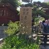 戌の日 鎌倉 大巧寺 安産祈願に行って参りました。
