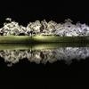 岐阜県観光大使の桜情報~鏡張りが美しい夜桜~
