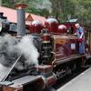 メルボルン観光でおすすめしたい!パッフィンビリー鉄道の旅まとめ