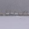 雪がきた・・写真3点