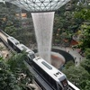 【ANA ダイヤモンド修行 エアポートラウンジ】シンガポール・チャンギ国際空港に行ったら、JEWELのRain Vortexを