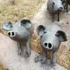 「ぶたさん」の作品を見に行きました。取手市埋蔵文化センター