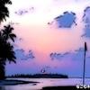 海・リゾート #116