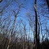 横瀬二子山と芦ヶ久保の氷柱とずりあげうどんを楽しむ冬の1日