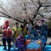 白百合公園お花見会で演奏しました