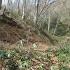 ◆4/3     高館山…横道を歩く④…岩倉コースを横切って~山頂~ほとりあ