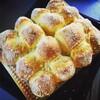 【出展者紹介】優しさに溢れるパン  1DAYBAKERY