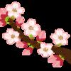 都立桜修館がyoutubeで適性検査問題の解説会 人数制限なしに変更!5月28日開催。